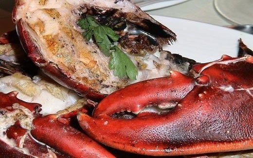 Marzo culinario in Olandatra astici e ostriche dello Zeeland