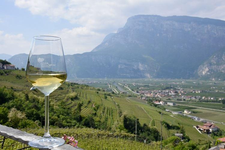 A tutto Nosiola Giornate autoctone in Trentino
