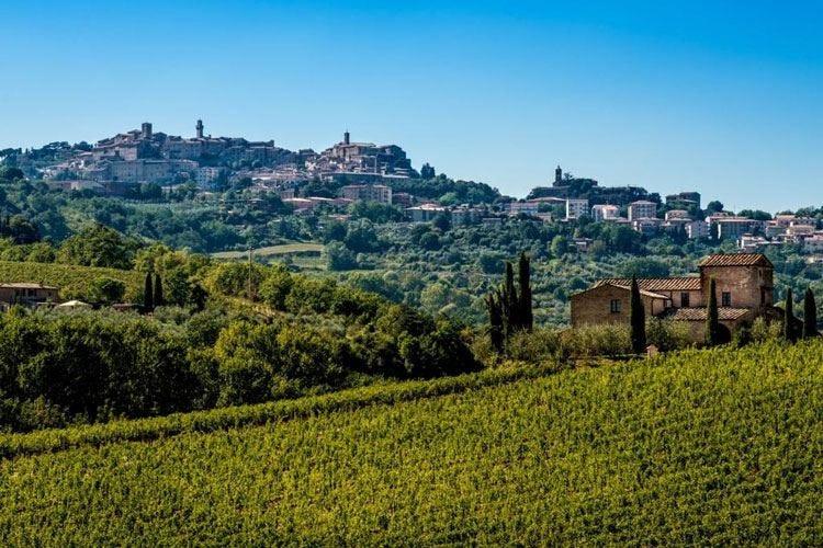 Abruzzo, un patrimonio in bottiglia A Roma il tour dedicato al Montepulciano