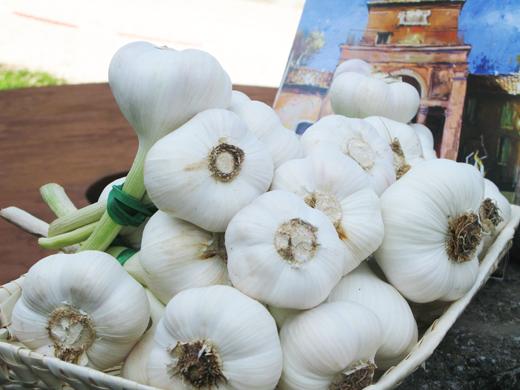 """Da """"pianta degli Inferi"""" a condimento L'aglio aggiunge sapore in cucina"""