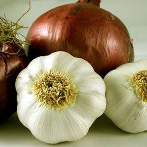 Le virt di aglio e cipolla utili contro l osteoartrosi italia a tavola - Le virtu in tavola ...