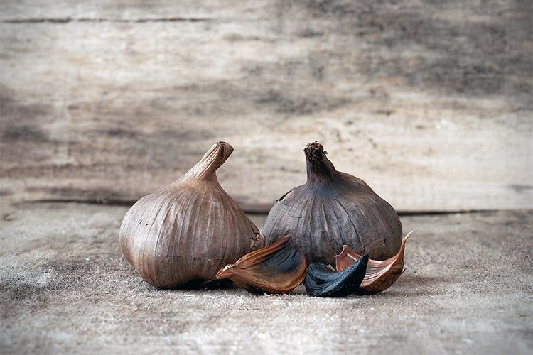 Aglio nero, più antiossidanti e sapore meno pungente - Italia a Tavola