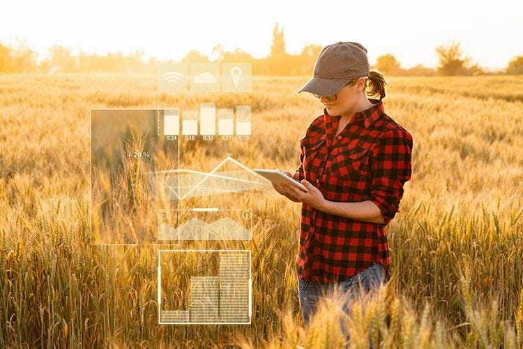 Il Ministro Bellanova a Leverano a parlare dell'agricoltura di domani
