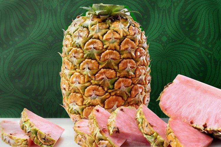 L'ananas Pinkglow di Del Monte (Fonte: pinkglowpineapple) - Se ai consumatori piace il rosso... in arrivo ananas e kiwi colorati
