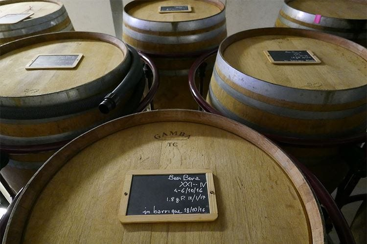 Non solo vino... Nel legno affina anche la birra