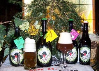 In Friuli la prima birra artigianale con gli aromi della montagna Doc