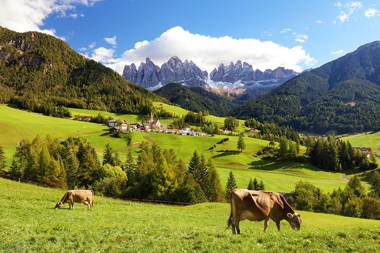 Senza turismo sono a rischio i 5.266 i tesori alimentari tradizionali dei borghi d'Italia Il fermo ai viaggi mangia le Dop A rischio i prodotti dei borghi