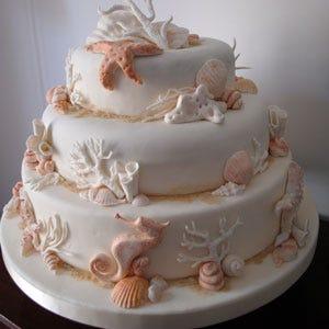 Donne boss delle torte per dolci capolavoro porter for Arte delle torte clementoni