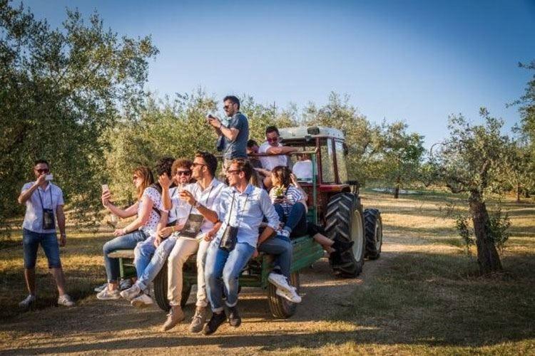 Cantine aperte, 800 in tutta Italia per la 27ª Festa del vino di Mtv