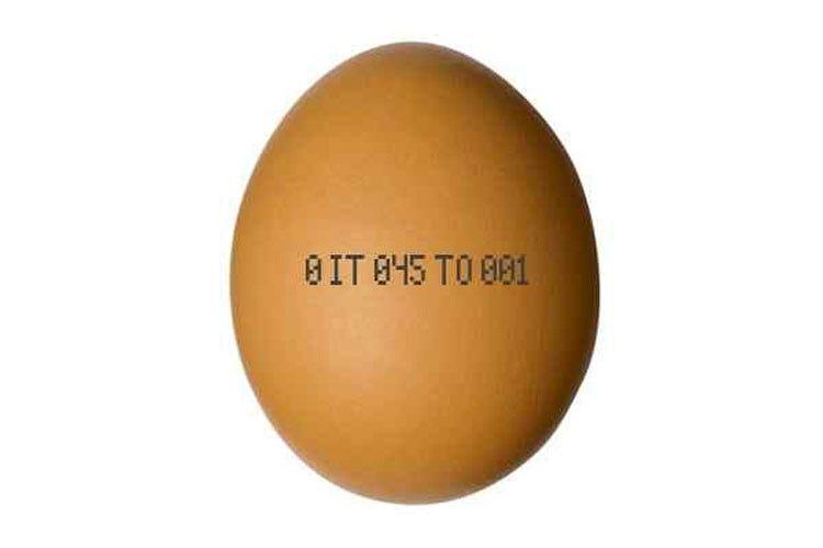 La carta d'identità delle uova Come leggere il codice sul guscio