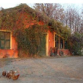 Cascina degli ulivi a Novi Ligure L'arte dell'agricoltura biodinamica