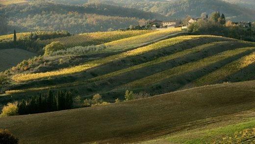 In Vespa sulle colline del Chianti Tra castelli, natura ed enogastronomia