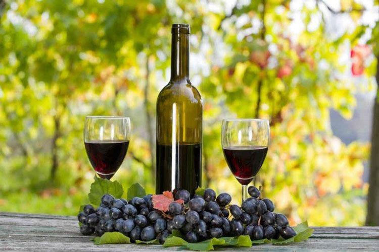 Il Consorzio Vini Oltrepò Pavese si apre all'entrata di nuove aziende