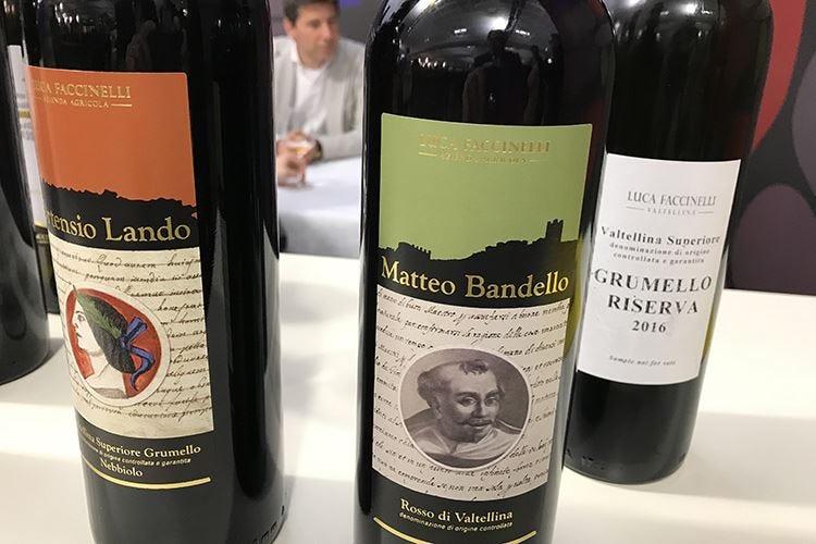 Vini di Valtellina Emblema della viticoltura montana