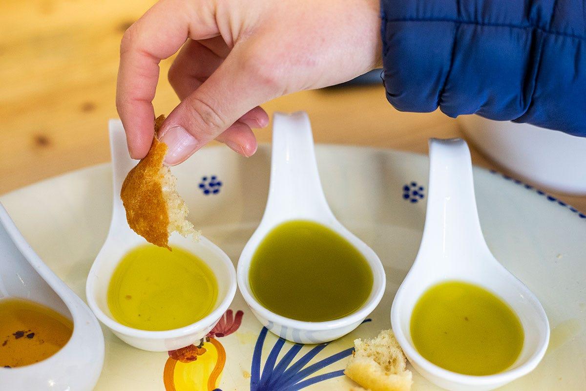 Più cultura e consapevolezza per valorizzare il vero olio di qualità