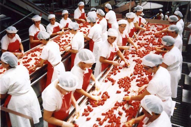 A Orlando i cuochi Usa scoprono la qualità del pomodoro italiano