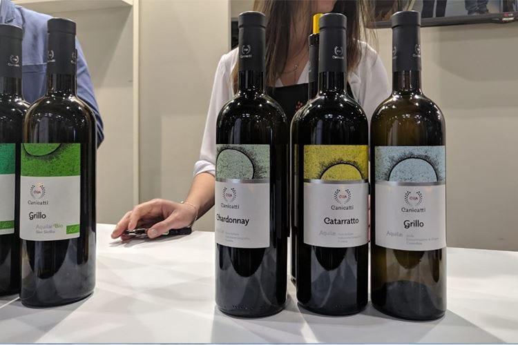 Il mezzo secolo di Cva Canicattì Due vini nuovi per festeggiare