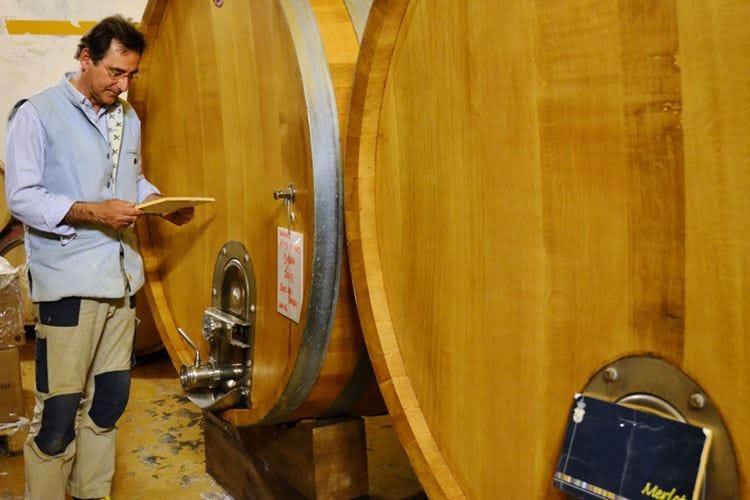 Dei Principi di Spadafora Nei vini tutta la nobiltà siciliana