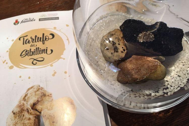 Diamanti a Tavola Monti Sibillini in festa per il tartufo