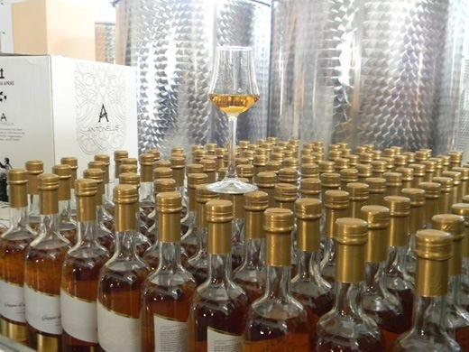 Distilleria Antonellis a Venticano Eccellenza irpina che piace all'Anag