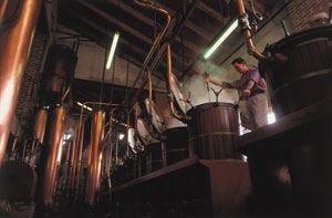 Grappa protagonista a Vicenza Ad ottobre ritorna Distillerie Aperte