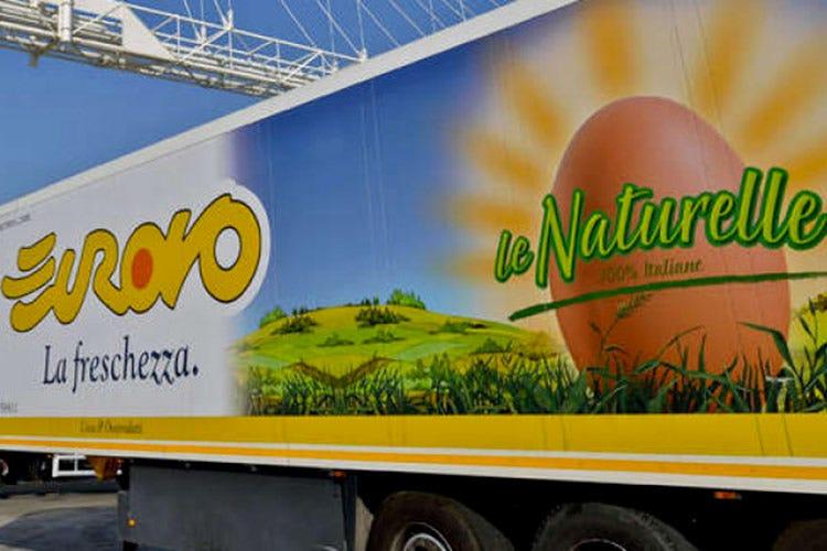 Rimettersi in forma con le uova Eurovo, per una dieta bilanciata