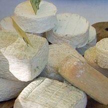 Caseus Montanus e Fabio Campoli raccontano la storia d'Italia dei formaggi
