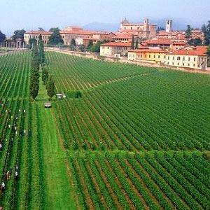 """Vent'anni di """"Bollicine in Franciacorta"""" Tanti sponsor e un vino d'eccellenza"""