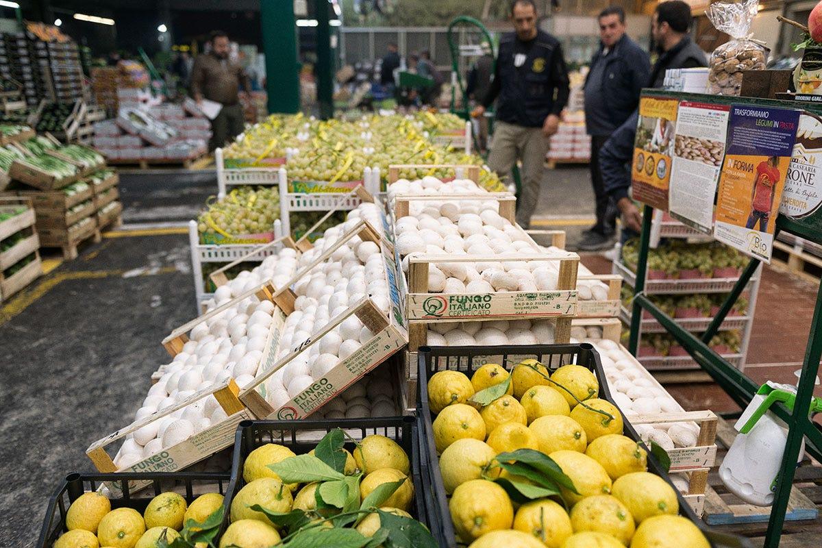 Causa pandemia, gli agrumi sono stati fra i prodotti più richiesti dal mercato al dettaglio Sogemi, euforia da riapertura «L'Horeca spinge in alto gli ordini»
