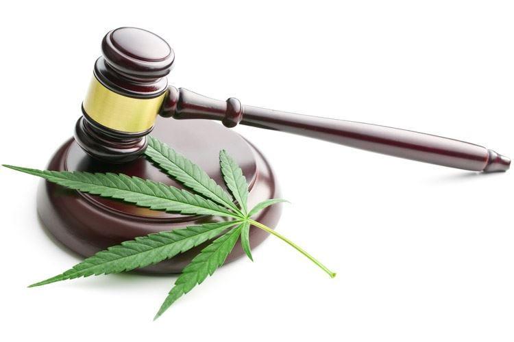 Fuori legge i derivati della cannabis Ma i negozi resteranno aperti