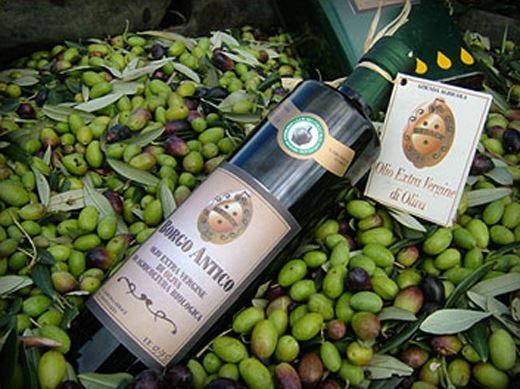 Premio Morgantìnon d'Oro 2013all'Azienda agricola Gerace di Enna
