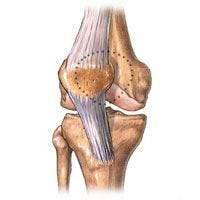 Sole e aria aperta contro l'artrosi alle ginocchia