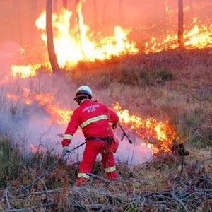 Allarme incendi in Liguria Confagricoltura preoccupata