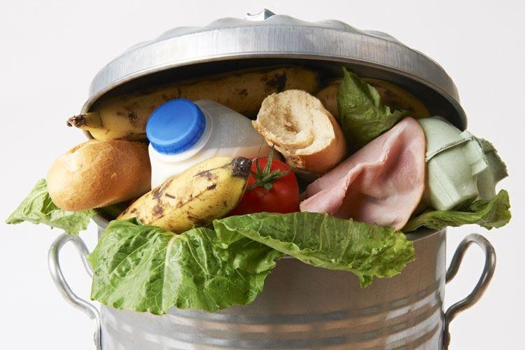 Indagine Fipe sullo spreco alimentare Problema serio per l'80% dei ristoratori