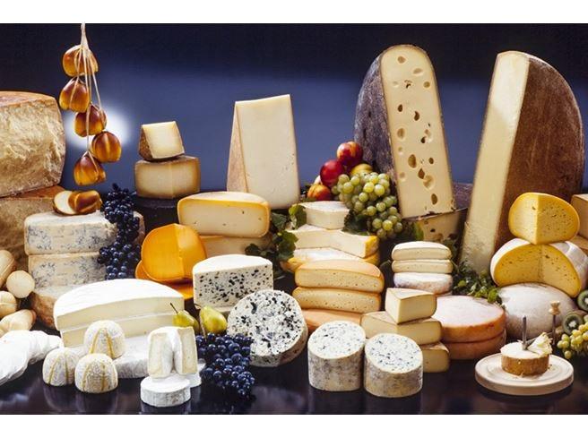L'Italia dei formaggi in 50 Dop Sei su 10 arrivano dal Nord