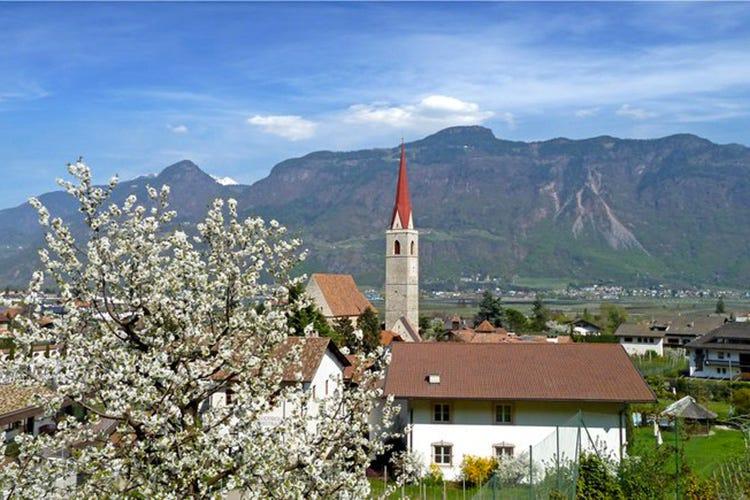 """""""Lana in fiore"""", festa di primavera. Natura e gastronomia in Alto Adige"""