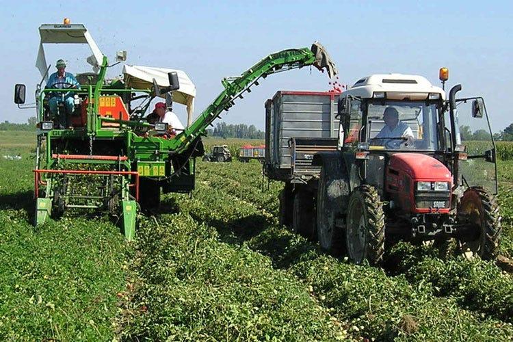 Lombardia, agricoltura in salute Nel 2018 la produzione ...