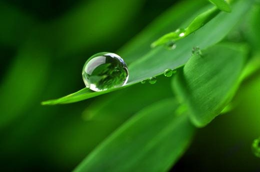 Lucart e Green Key insieme per una vacanza ecosostenibile