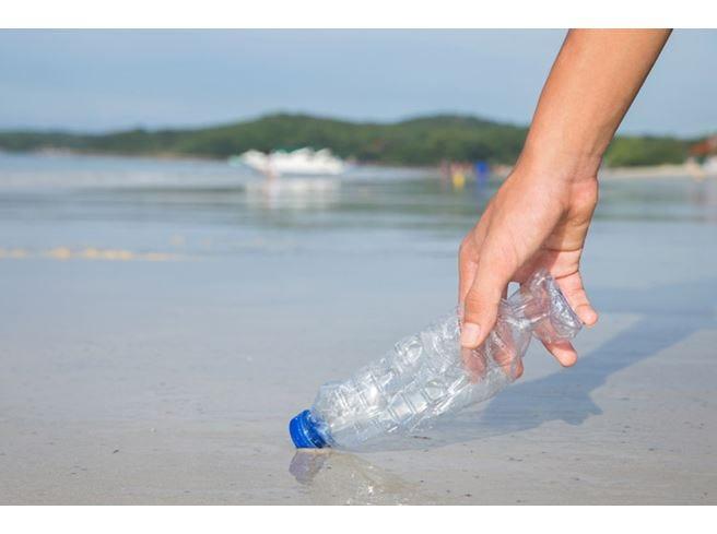 Mangiamo 260 g di plastica l'anno  È presente in acqua, sale e birra