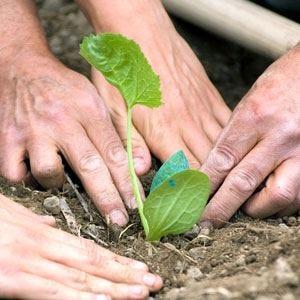 Congresso mondiale degli agronomi A Quebec City l'Italia protagonista