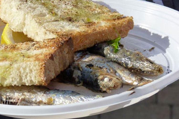 Un mare di gusto a San Vincenzo Street food tra fiori e pesce azzurro