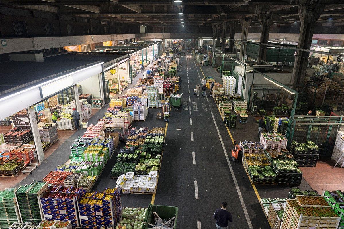 Lo spazio dedicato al commercio di prodotti ortofrutticoli all'interno di Foody Mercato Agroalimentare di Milano Sogemi, euforia da riapertura «L'Horeca spinge in alto gli ordini»