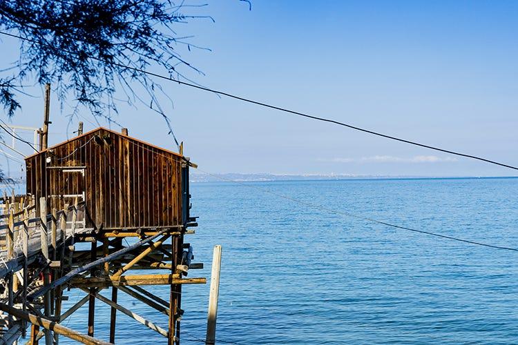 Nasce il distretto della pesca Mare e colline del Molise Dal mare alle colline del Molise Nasce il distretto della pesca
