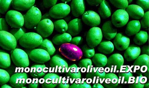 """Monocultivaroliveoil Expo e Bio 2015 premiano 27 oli italiani con il """"Gold"""""""