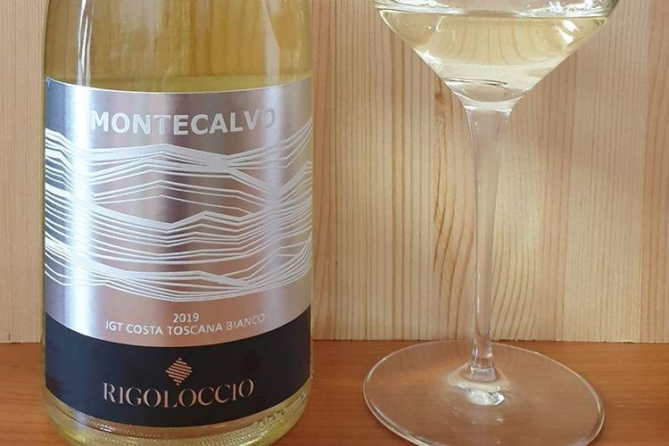 £$Ripartiamo dal vino$£ Montecalvo 2019 Rigoloccio
