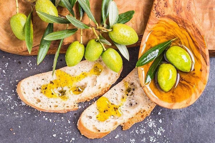 In Italia 9 famiglie su 10 consumano l'olio di oliva tutti i giorni - Olio italiano re delle tavole Crescono consumi ed esportazioni