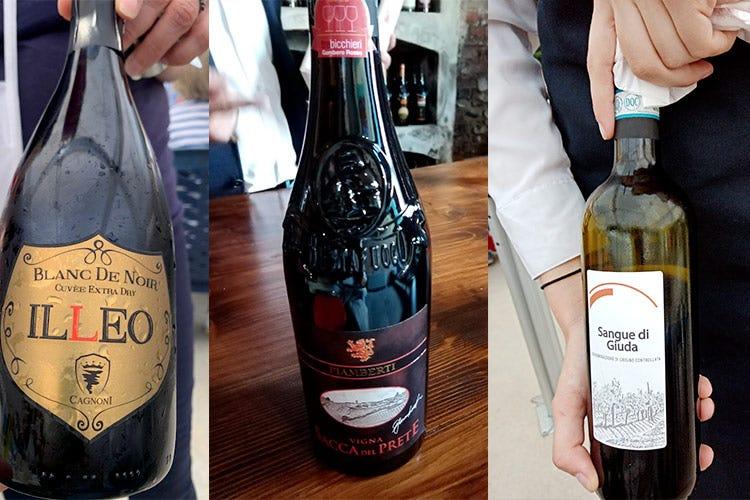 Nero di Sclavi, Buttafuoco y Sange di Giuda A ... el tour de degustación pone a L'Oltrepò en la cima de la copa