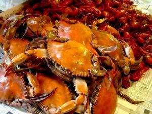 "Stranieri 3 piatti di pesce su 4 Serve una ""carta"" nei ristoranti"