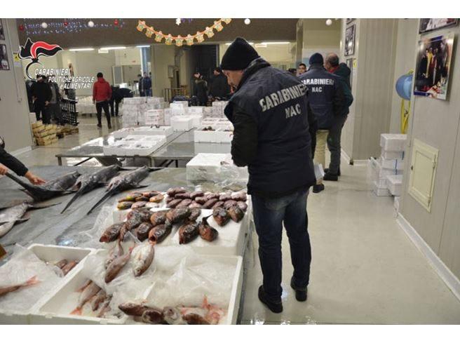 Pesci, legumi e cereali non tracciati Sequestrate 13 tonnellate a Caserta