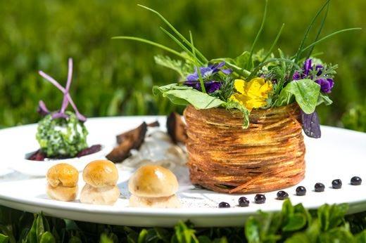 Estate tra le Dolomiti, all'hotel Pfösl Cucina bio e spa a energia rinnovabile